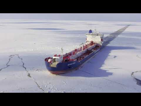 Ships in the (Polar) night –sustainable Arctic shipping