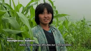 Integrated Landscape Management at Yenangbrangsa, Samkhar, Trashigang
