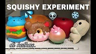 JADI SLOW BANGET!! SQUISHY EXPERIMENT #2 (masuk kulkas)