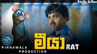 මීයා - Meeya (Pinnawala Production)