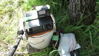 Радиосвязь на КВ с берега реки Припять Рыбалка с друзьями TRX SW2010 Антенна укороченный GP 40 20М