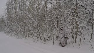 Tough Poncho in True Timber Snowfall makes hammock and tarp too