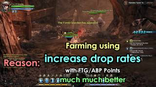 Let's Play Dragon Nest SEA - NEW ABP/FTG System Farming Guide & Advice!!!