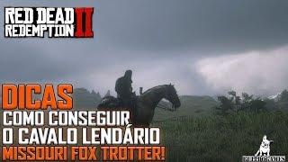 Red Dead Redemption 2 -  DICAS - COMO PEGAR O MISSOURI FOX TROTTER, CAVALO MAIS RÁPIDO QUE O ARABIAN