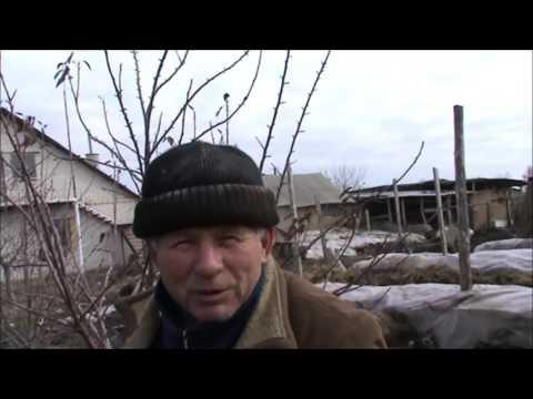 pishechki-smotret-video-trahnul-v-trusikah-zhenshinu
