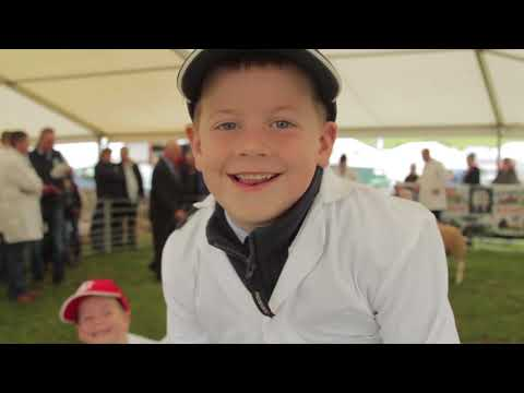 The Wigtown Show 2017