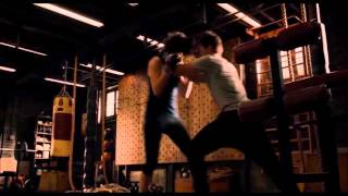 Ant Man Scott Lang VS Hope van Dyne Fight Scene