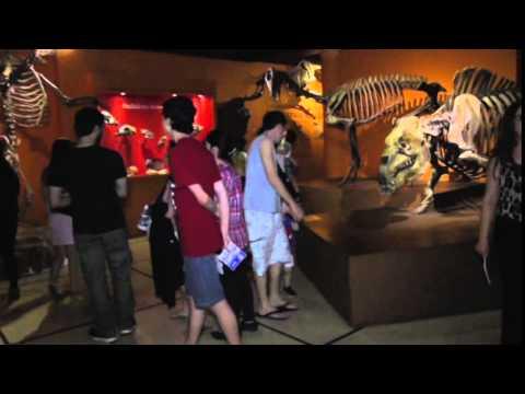 """Noche de los Museos 2014 - MACN """"Bernardino Rivadavia"""""""