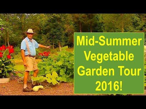 Mid-Summer Organic Vegetable Garden Tour 2016
