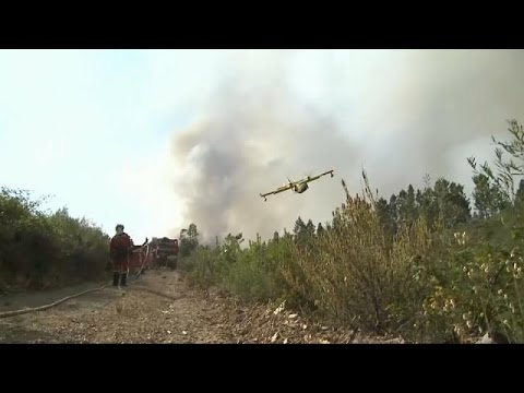 Airplane crashes while battling wildfires in Portugal