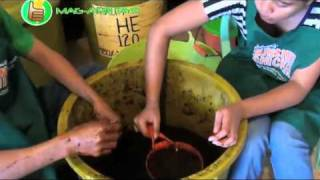 organic/natural farming: fermented plant juices