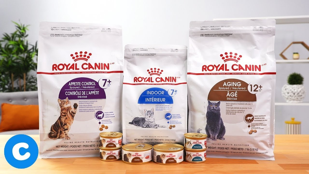 Royal Canin Feline Health Senior Cat Food Chewy Youtube