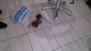 Совок со сгоном Леголенд. Быстрая уборка пола в парикмахерских с совком и сгоном Леголенд