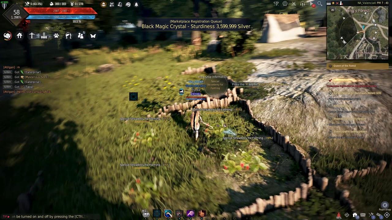 Staff Response - Remastered crash bug | Black Desert Online