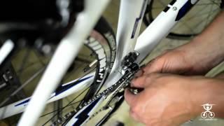 Il Montaggio Della Bici Comprata Sul Web  Parte A