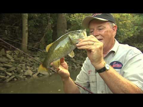 Smallmouth Creek Fishing
