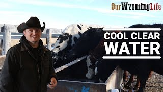 stock-tank-heaters-vs-breaking-ice-water-on-the-ranch
