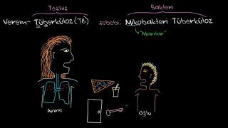 Tüberküloz (Verem) Nedir? (Sağlık: Verem) (Bulaşıcı Hastalıklar)