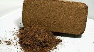 видео Как пользоваться кокосовой стружкой для рассады + фото