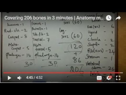 Covering 206 bones in 3 minutes | Anatomy made easy | skeletal system