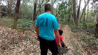 Racing Car in the jungle