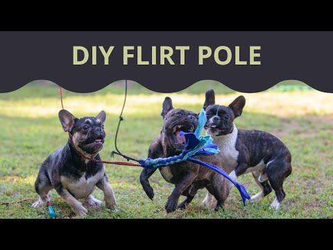DIY Flirt Pole