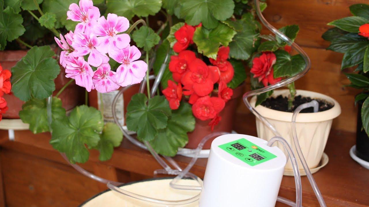 Устройство для полива цветов во время отпуска своими руками фото 735