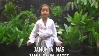 Mbok Jamu Lagu Anak Indonesia 2016 Mp3