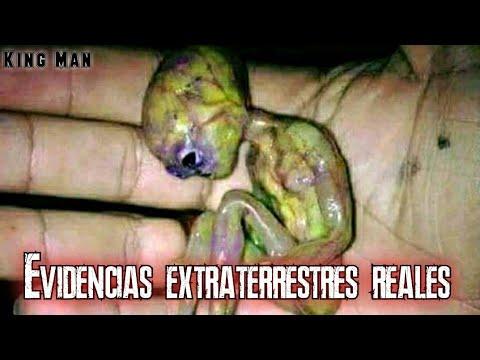 Autenticas evidencias extraterrestres encontradas en diferentes partes del mundo