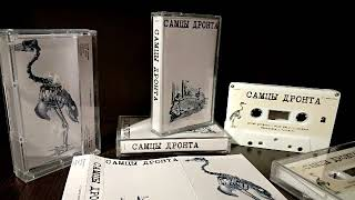 Самцы Дронта - Wild Smile (Lost early 90s russian shoegaze / experimental / dream pop band)