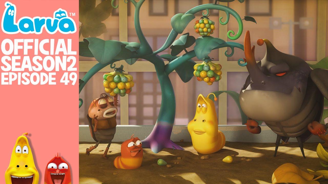 [Official] Strange berries - Larva Season 2 Episode 49