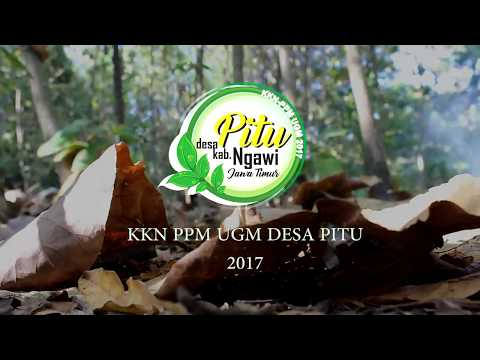 Video Profil Desa Pitu