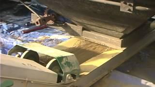 Unloading Rail Cars of Canola Meal Pellets