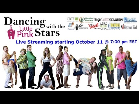 2014 Dancing with the Little Pink Stars