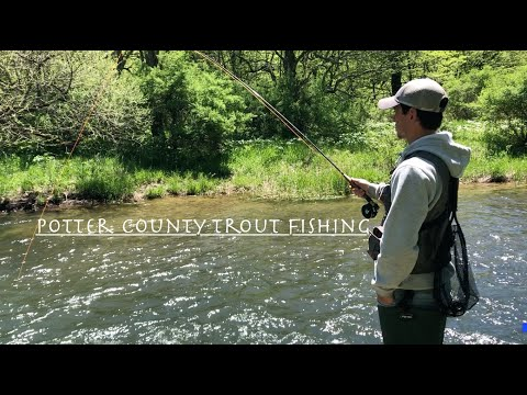 Trout Fishing Potter County PA! (GOOD ACTION)