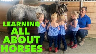 QUADRUPLET FIRST HORSEBACK RIDING LESSON