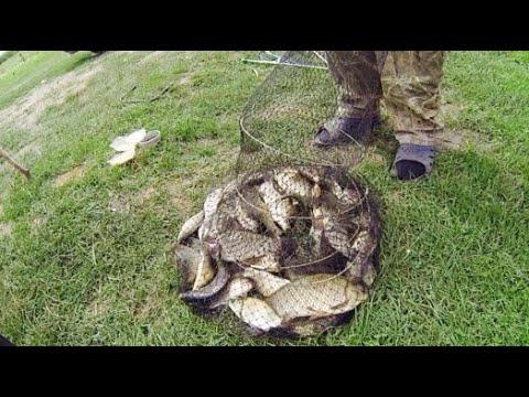 Риболовля в селi Москалiвка