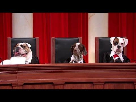 Comcast v. Behrend: Oral Argument - November 05, 2012