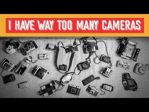 My Entire Film Camera Collection - Film Fridays