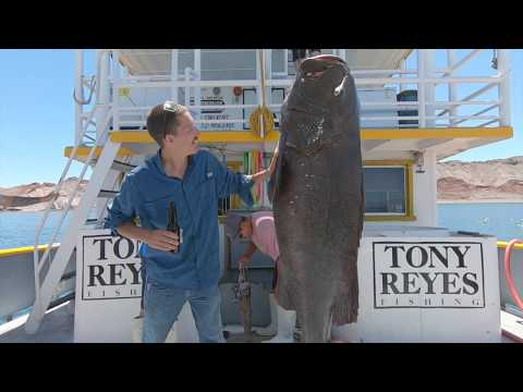 Tony Reyes Fishing Trip Sea Of Cortez