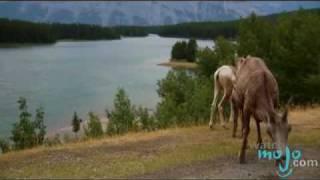 Travel Guide - Banff, Alberta