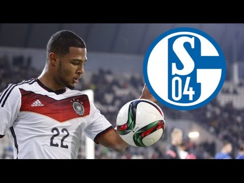 schalke 04 transfer news