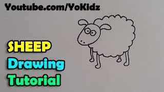 How to draw a Cartoon Sheep for kids easy and simple