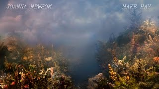 joanna newsom make hay official lyric video