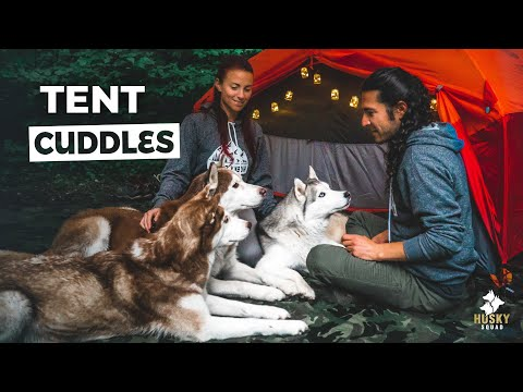 Camp and Hike In The Rain | HUSKY SQUAD