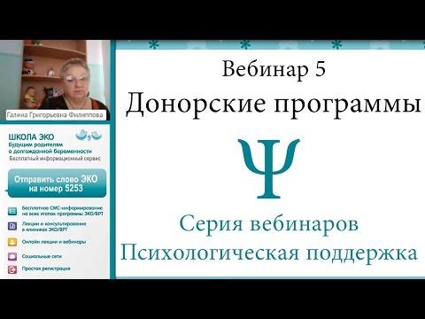 Сколько стоит сделать ЭКО в Москве. Прайс цен на процедуру