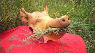 Что приготовить из свиной головы. Свиная голова. Pig head. .Eng sub.