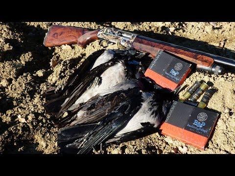 Test a caccia: Baschieri&Pellagri Magnum 50 calibro 12/76