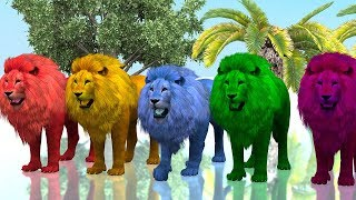 Learn Colours With Lion Colour Song || Nursery Rhymes || 3D Animated Rhymes