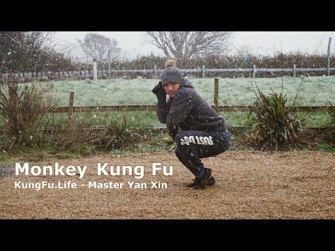 Shaolin Monkey Style